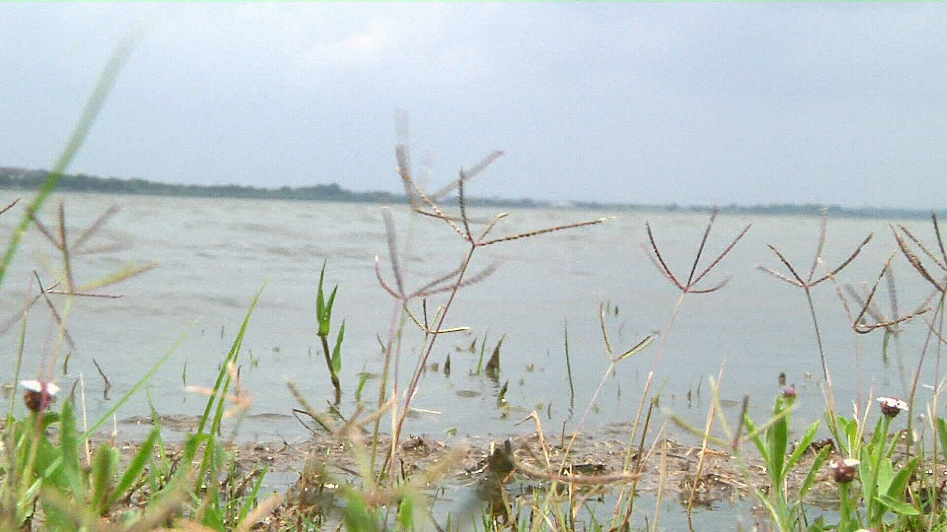 Oil-rich land near city's drinking water supply no longer listed for auction by a federal agency (KRIS 6 News)