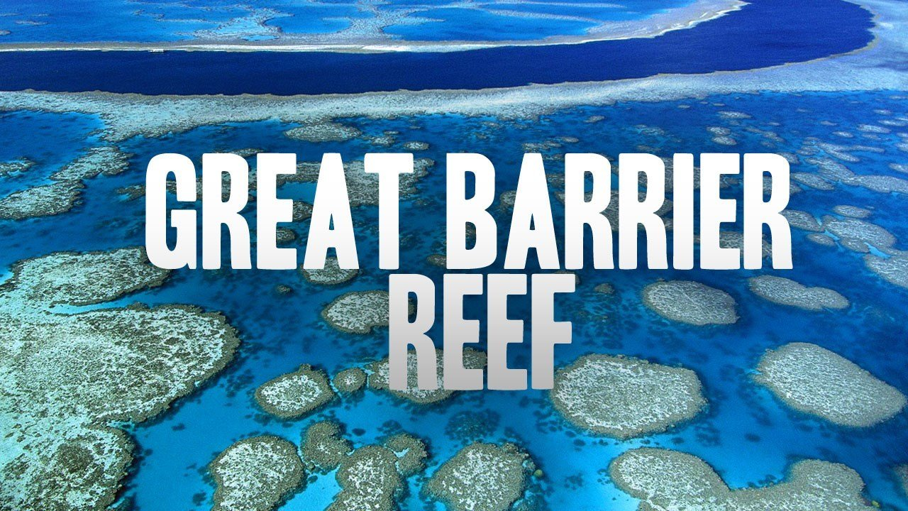 Cooler Ocean Needed To Save Great Barrier Reef From Coral Bleaching