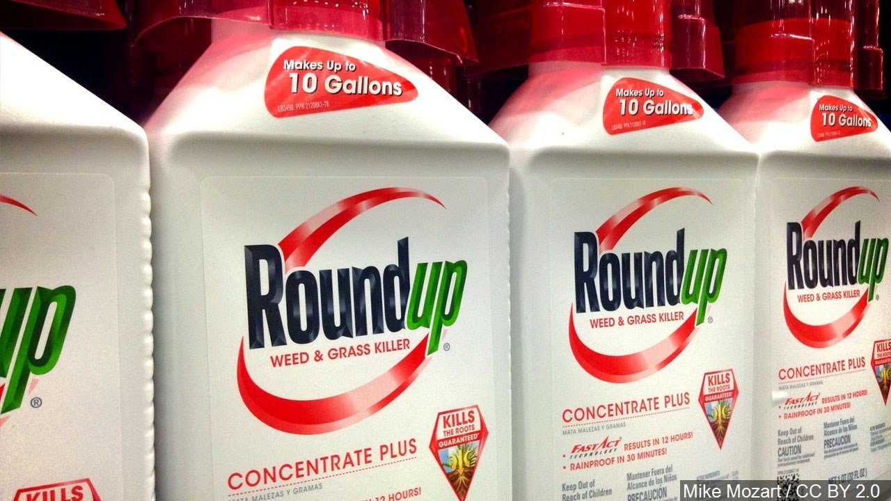 PHOTO: Roundup weed and grass killer