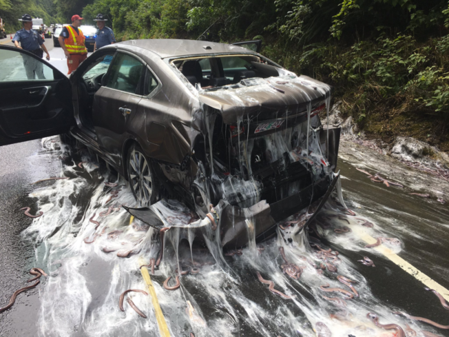 Truck carrying eels overturns on OR highway
