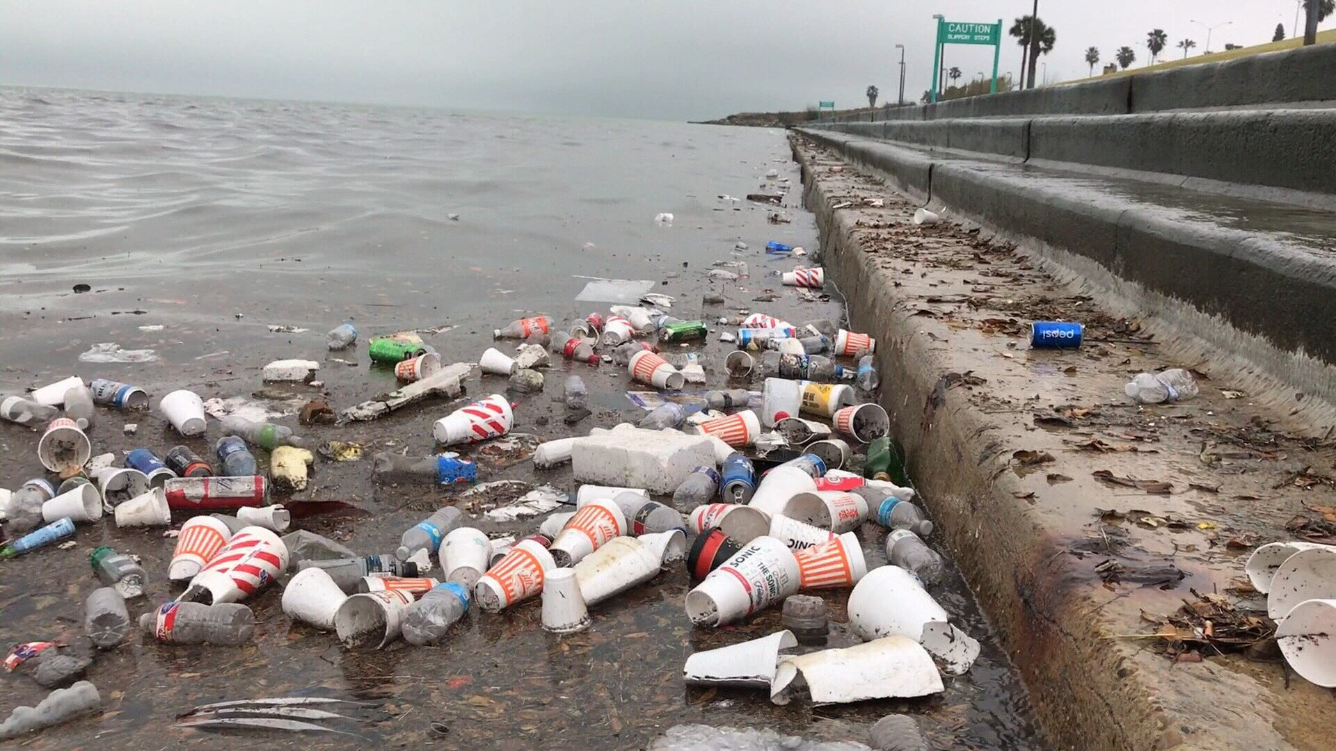 Trash that flowed into the bay through the storm water drains.