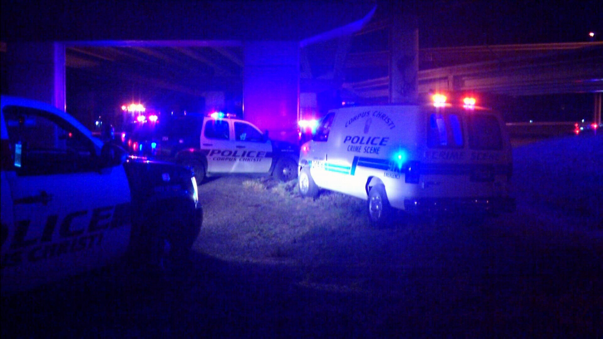 Two people were assaulted and one was shot after they allegedly stole a car.