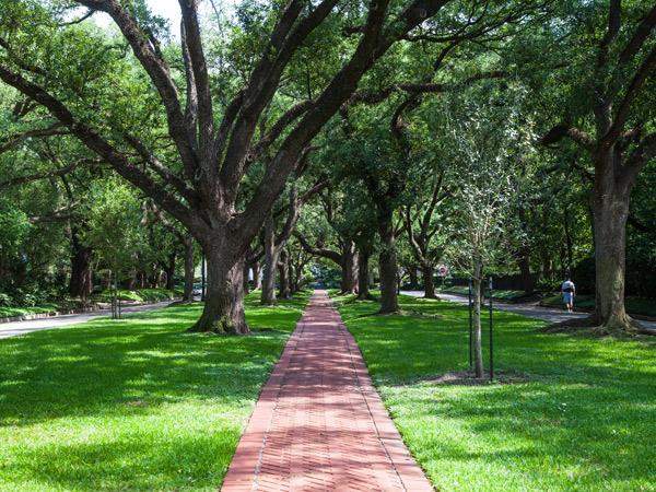 Photo: Broadacres neighborhood/The Cultural Landscape Foundation