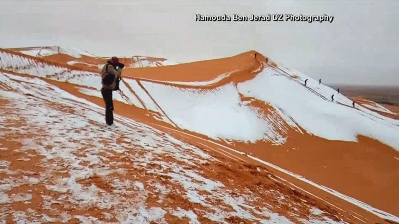 Rare snowfall covers Sahara Desert sand dunes