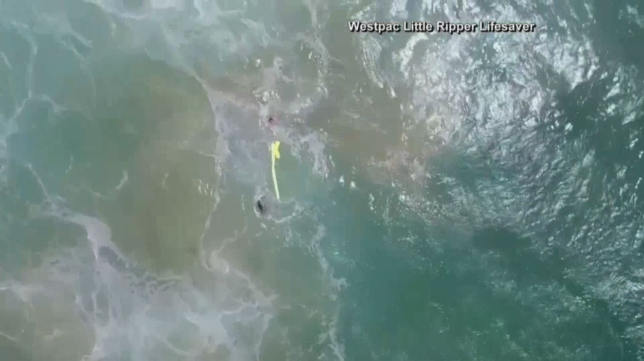 Dramatic footage of world-first drone surf rescue