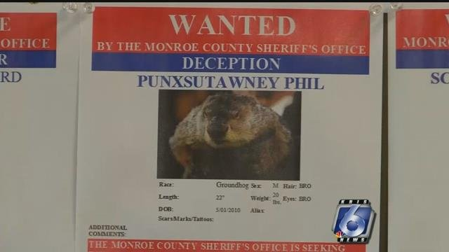 Pennsylvania sheriff's officer accuses groundhog Punxsutawney Phil of deception