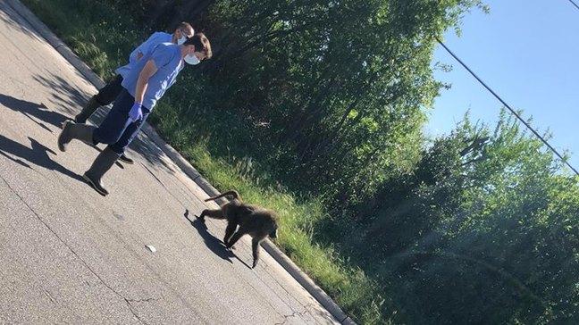Photo courtesy of News 4 San Antonio.