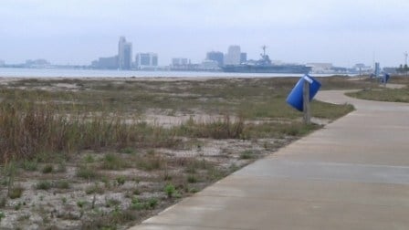 The lights will be along the 1.5 mile beach walk and in Dolphin and Surfside Parks.