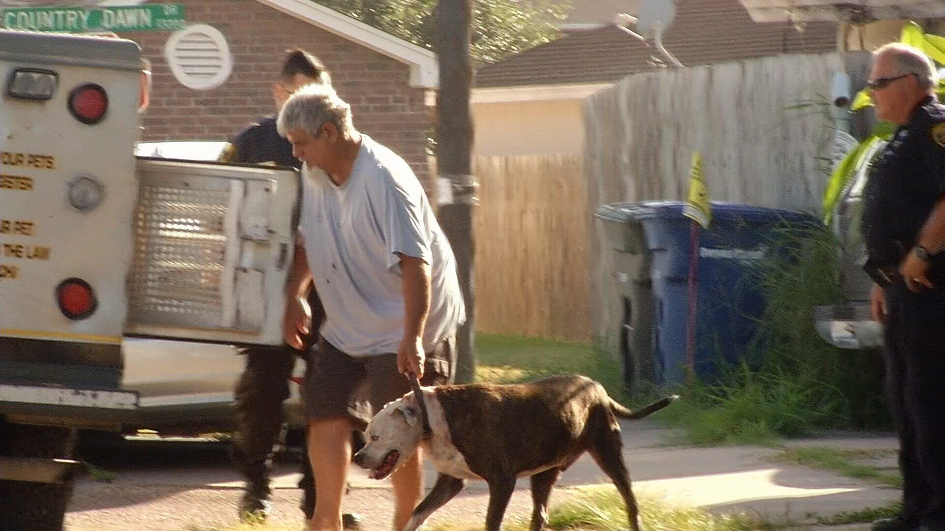 Animal Care Services picked up the pit bull after it attacked a woman and her dog on the 13000 block of Shelton Blvd.