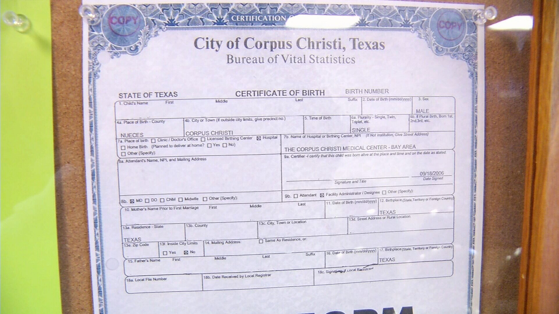 Inspirational photograph of birth certificate san diego business online birth certificate image collections birth certificate design aiddatafo Images