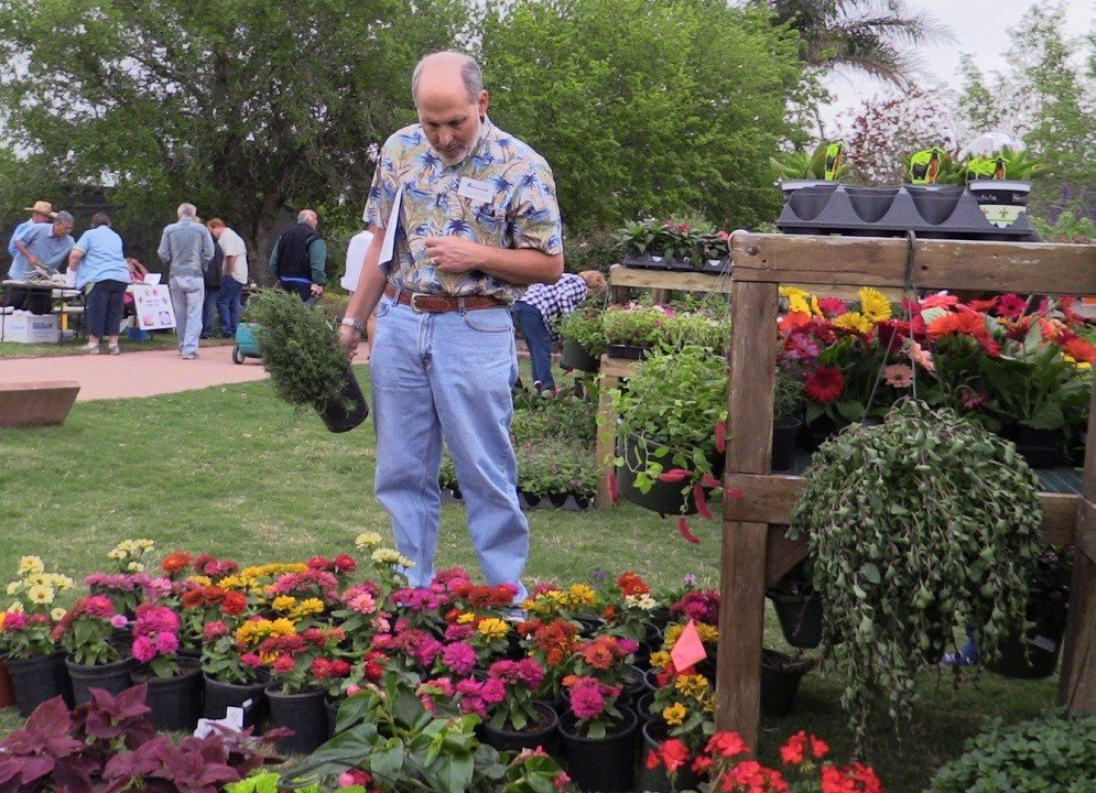 Big Bloom Plant Sale And Dollar Day At Botanical Gardens